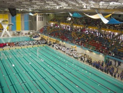 News Splash Part 2! – Bayside Swimming Carnival Report 2015